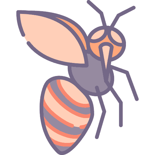 Bee - Albina