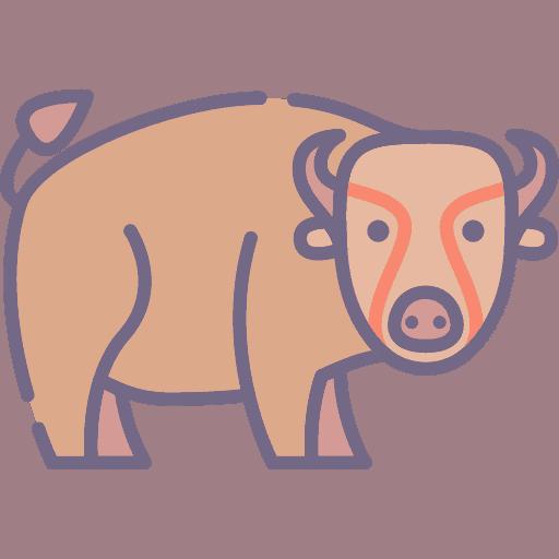 Bison - Bizon