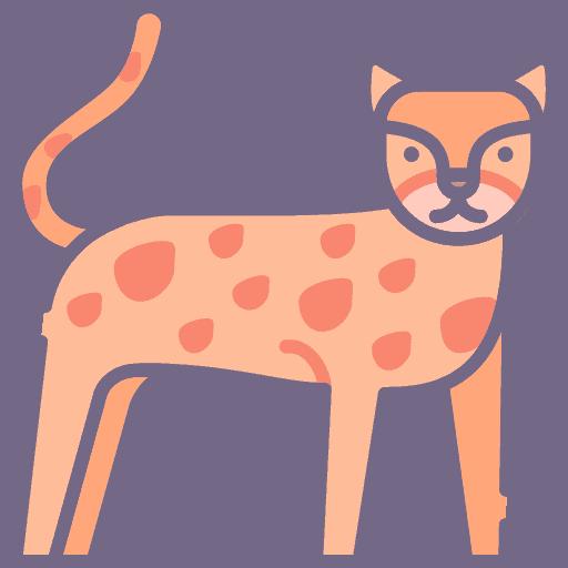 Cheetah - Ghepard