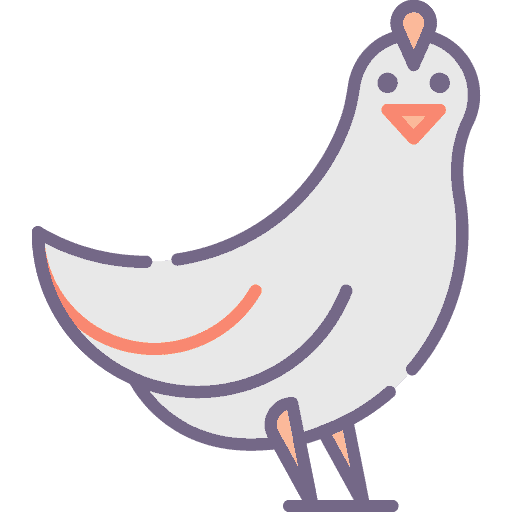 Chicken - Gaina