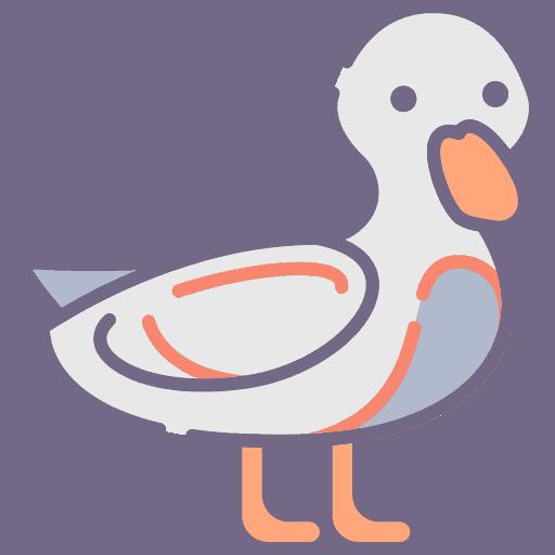 Duck - Rata
