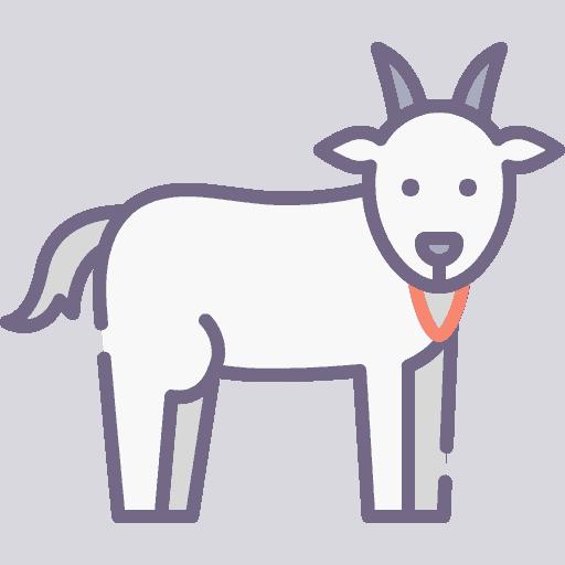 Goat - Capra