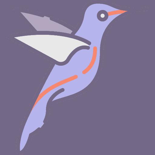 Hummingbird - Pasarea Colibri