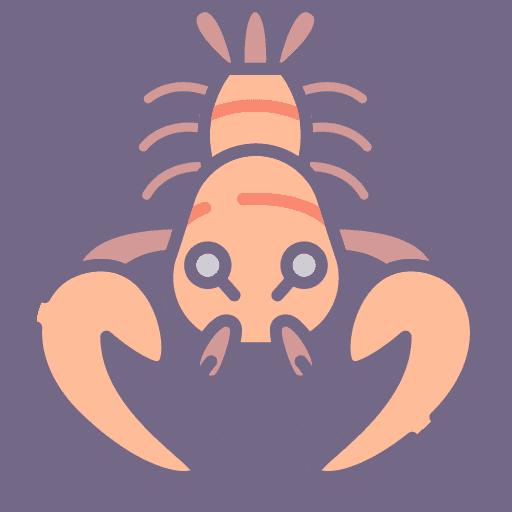 Lobster - Homar