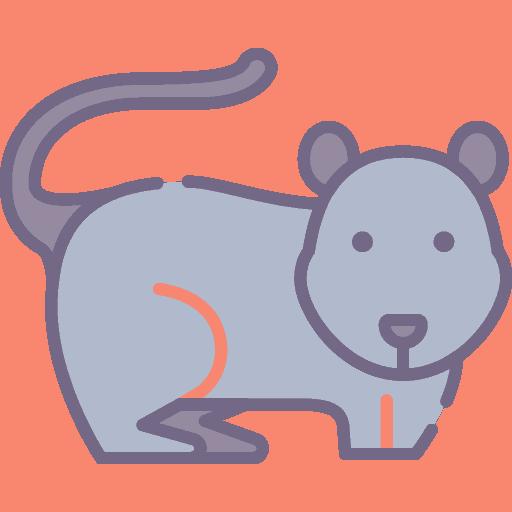 Mouse - Soarece