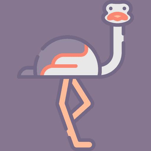 Ostrich - Strut