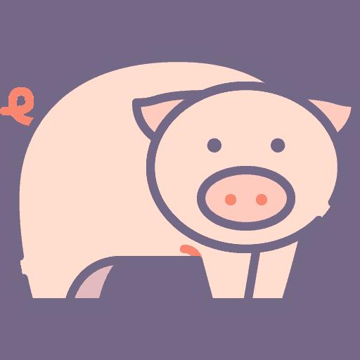Pig - Porc