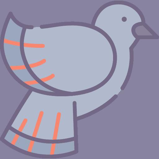 Pigeon - Porumbel