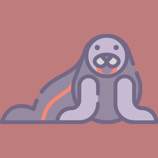Seal - Foca