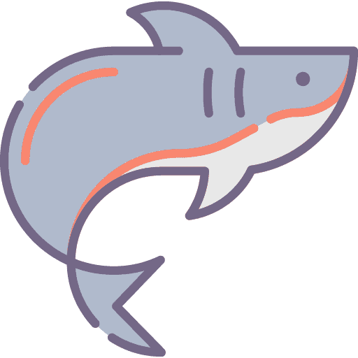 Shark - Rechin