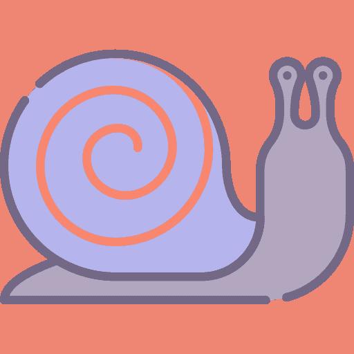 Snail - Melc