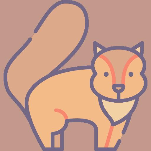 Squirrel - Veverita