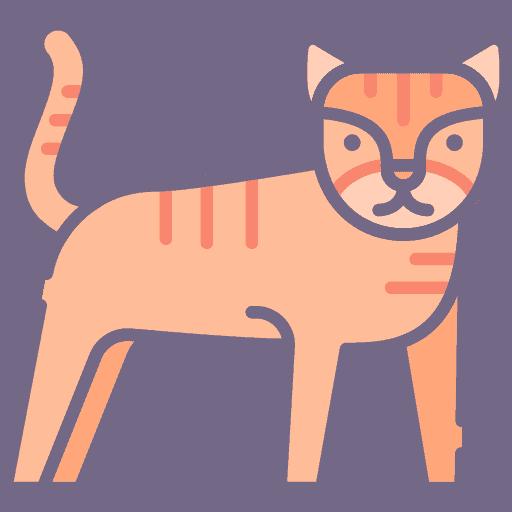 Tiger - Tigru