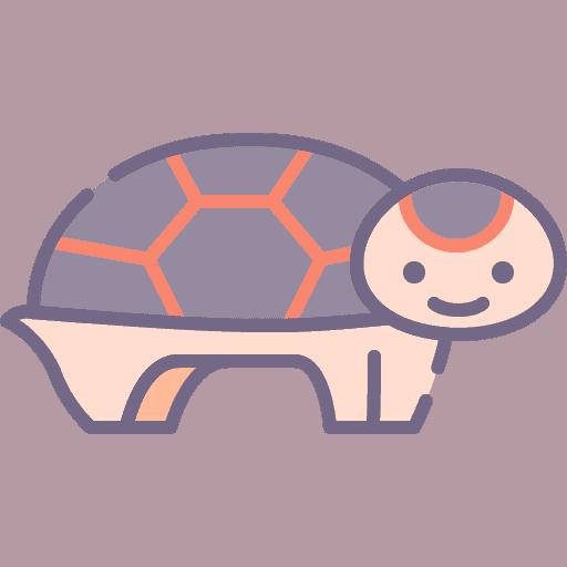 Tortoise - Testoasa de pamant