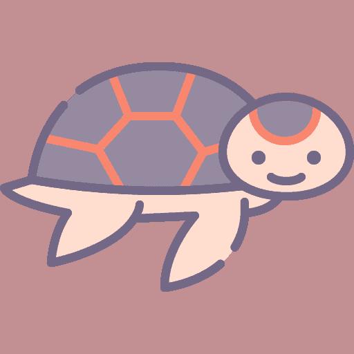 Turtle - Testoasa de apa